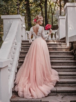 Ball Gown V-neck Long Sleeves Court Train Applique Tulle Wedding Dresses