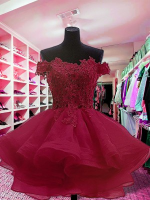 Ball Gown Off-the-Shoulder Organza Sleeveless Short/Mini Dresses